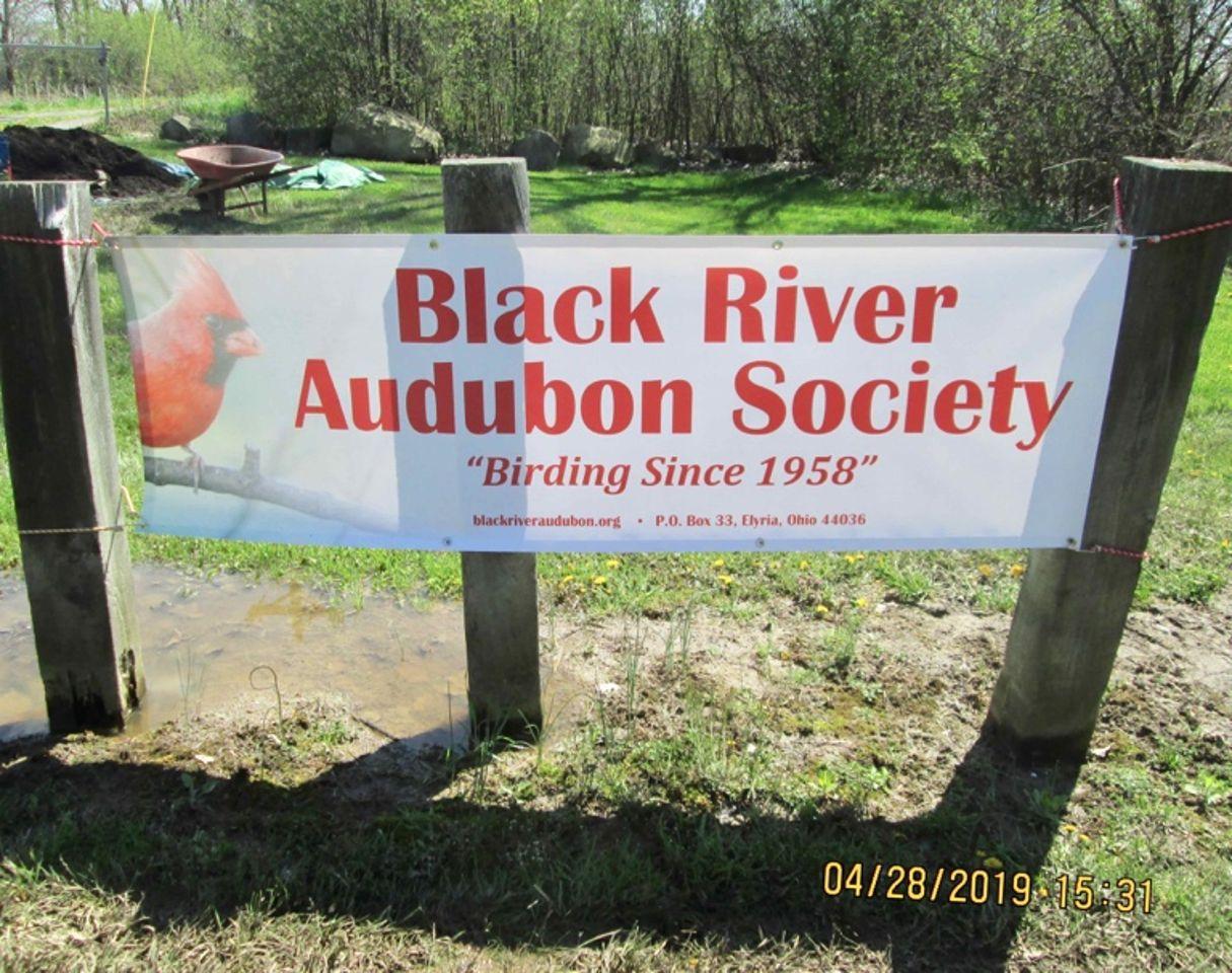 Black River Audubon Society