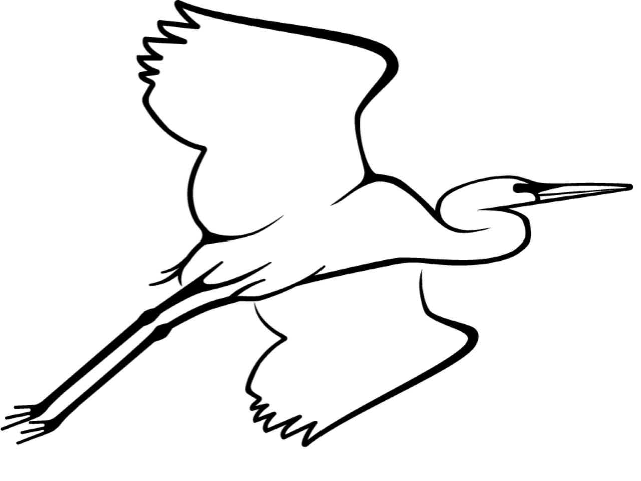 National Audubon Society Logo